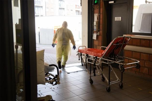 9 nieuwe corona-overlijdens in Limburg brengen totaal op 203
