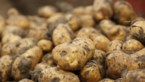 Elke week 25 ton aardappelen voor de voedselbanken