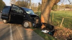 Bestelwagen knalt tegen boom in Zonhoven: slachtoffer levensgevaarlijk gewond