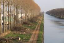 Bomen gekapt langs Zuid-Willemsvaart wegens te gevaarlijk