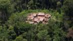 Corona is echt overal: 15-jarige jongen uit Braziliaanse inheemse stam slachtoffer