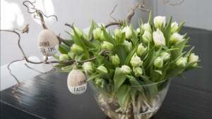 Snijbloemen op hun paasbest: zo houd je je boeket het langst vers