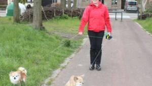 Anneke laat hondjes van zieke dorpsgenoot uit
