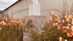 Koen Vanmechelen eert overleden echtgenote met sculptuur