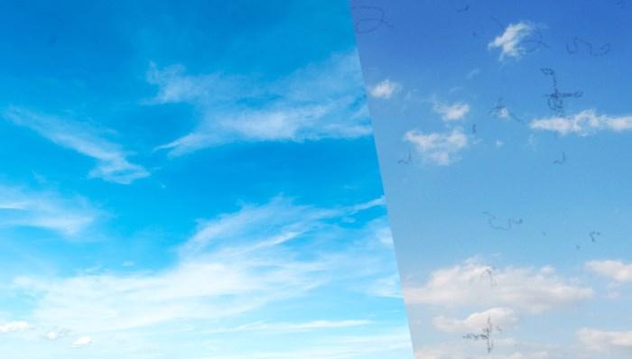 Zie je ze ook vliegen? Daarom lijken er op mooie dagen 'draadjes' in de lucht te zweven