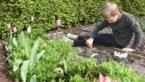 Ga met het hele gezin op onderzoek in eigen tuin