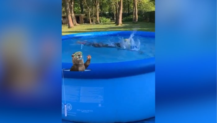Jelle Geens zwemt in eigen tuin