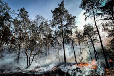 Natuurbrand in Nederlands-Limburg deels onder controle, wel nog verschillende hotspots