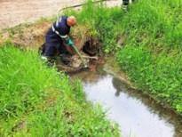 Wermerbosbeek al voor derde keer vervuild