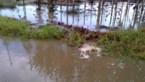 Demir maakt prioriteit van bestrijding van wateroverlast en -schaarste