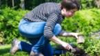 """Wroeten in de grond is gezond: """"Tuinieren maakt je hoofd leeg"""""""