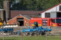 16.000 kippen sterven bij stalbrand in Nieuwerkerken