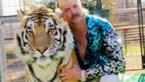 Nog een nieuwe aflevering van Netflix revelatie 'Tiger king' op komst