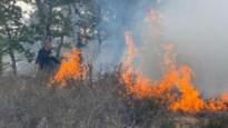 Brand in De Teut: rookpluim van ver zichtbaar