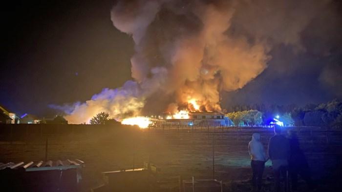Twee Poolse seizoensarbeiders zwaargewond bij inferno in loods in Zepperen