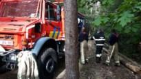Tal van weekendhuisjes gered bij bosbrand in Stockheimderbosch in Lanklaar
