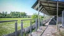 Limburg verloor in 30 jaar meer dan honderd voetbalclubs: bekijk hier de prachtige beelden