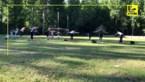 In Zoutleeuw zijn ze creatief: yogales … op een voetbalveld
