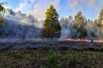 Vier are bos in brand in Teuven