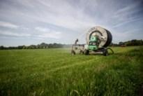"""Oppompverbod in Limburg: """"Wees spaarzaam met water"""""""