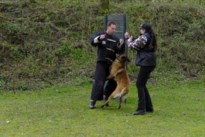 Volg via webcam hoe politiehonden worden klaargestoomd