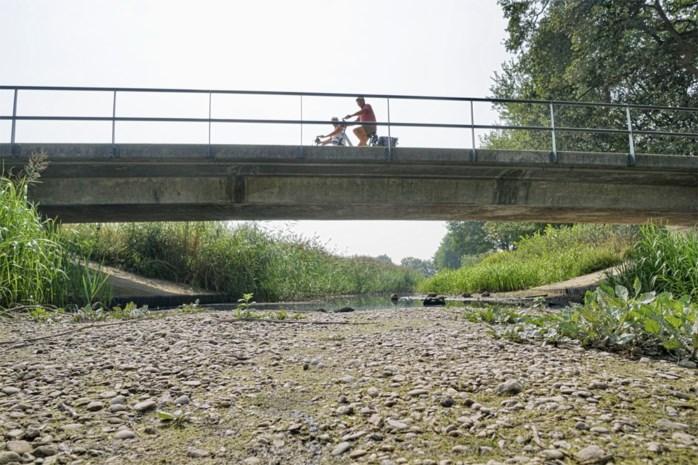 """Waterbeheerders snakken naar regen in Nederland: """"Droogste mei van geschiedenis"""""""