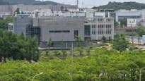 """Directrice van lab in Wuhan:""""Onze coronavirussen van vleermuizen stemmen maar 79,8 procent overeen met Covid-19"""""""