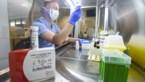32 nieuwe overlijdens in België, aantal nieuwe besmettingen daalt