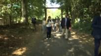 Zuhal Demir wil 4.000 hectare nieuw bos realiseren: Limburg in de cockpit