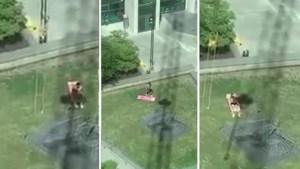"""Kraanbestuurder plaagt zonnebadende man: """"Ik zet deze kerel in de schaduw"""""""