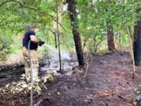 Hond huilt buurt wakker voor bosbrand