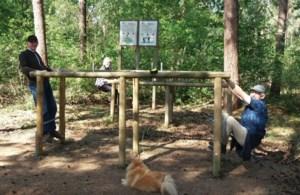 Kranige tachtigers weer aan het sporten op de fit-o-meter in Kaulille