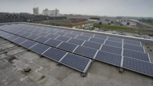 Energieminister Zuhal Demir bouwt subsidies voor hernieuwbare energie verder af