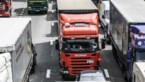 """Vrachtwagen met koeien gekanteld op E17 in Gentbrugge: """"Hasselt naar Gent via Brussel"""""""