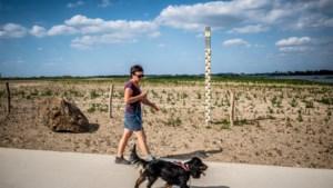 Alarmfase rood door droogte: in deze natuurgebieden ga je best niet meer wandelen