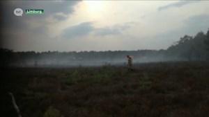 """Brandfase rood door extreme droogte: """"Blijf uit de Limburgse bossen"""""""