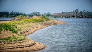 De Maas kan ons niet meer redden bij extreme droogte