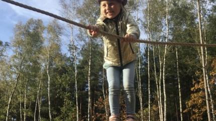 Spelen in het grootste bos van het land? Onze tien doe-tips voor het weekend