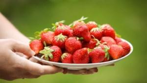 Smullen van de zomer: Bretoens gebak met vanillemousse en rode vruchten