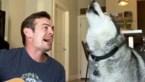 Muzikant zingt hilarisch duet met zijn hond