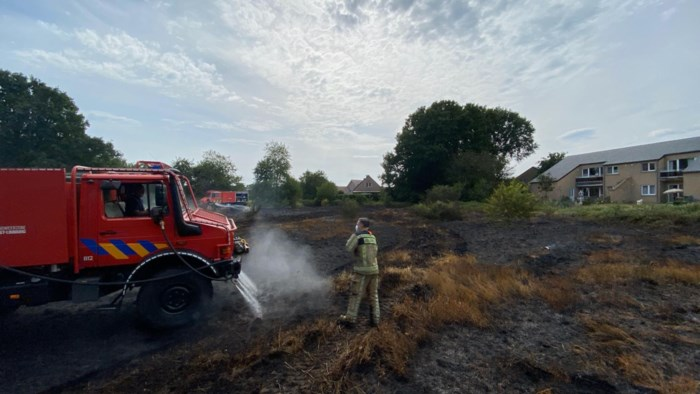 Halve hectare grasveld afgebrand, tuinen net op tijd gevrijwaard