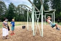 Schommels voor kinderen en volwassenen in Molenvijverpark