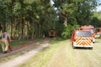 Brand verwoest chalet en auto in bos in Kwaadmechelen
