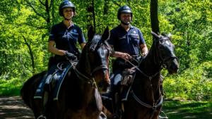 Federale politie te paard moet overlast aan Lommelse zandputten helpen bedwingen
