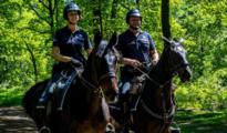 Federale politie te paard moet overlast aan zandputten helpen bedwingen