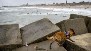 Stoffelijk overschot gevonden bij haven Scheveningen, mogelijk van vermiste surfer