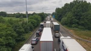 Zware hinder tijdens de ochtendspits: verkeer op E313 richting Antwerpen muurvast