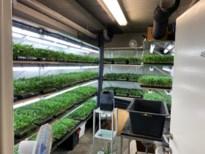 Acht arrestaties in groot drugsonderzoek met duizenden wietplanten en veel cash