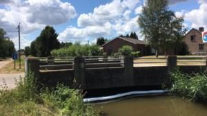 Opnieuw olievervuiling in Mangelbeek in Lummen