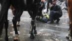 Agent te paard in Londen valt na botsing tegen verkeerslicht: lichte paniek en schermutselingen